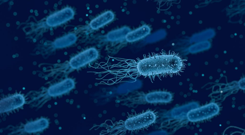 bacterial toxin