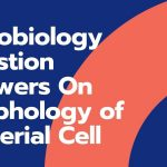 Microbiology Question Answers On Morphology of Bacterial Cell