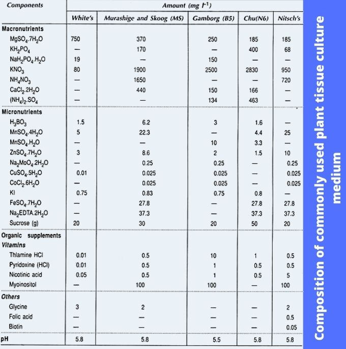 Composition of commonly used plant tissue culture medium