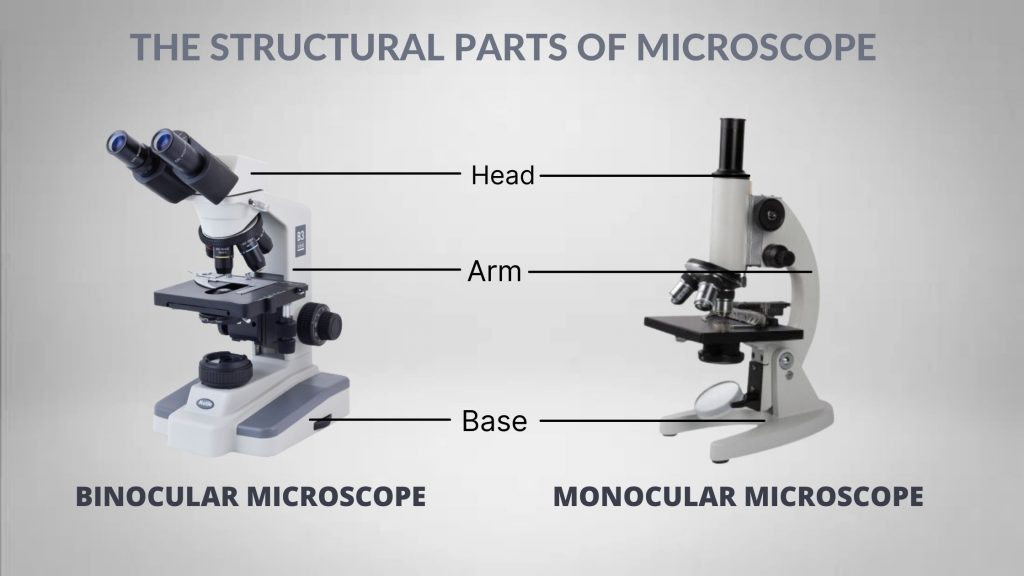 The structural parts of Microscope