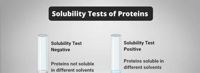 Solubility Tests of Proteins Principle, Procedure, Result, Application