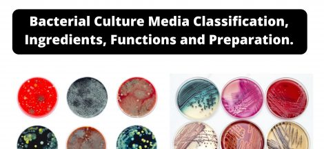 Bacterial Culture Media Classification, Ingredients, Functions and Preparation.