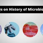 MCQs on History of Microbiology