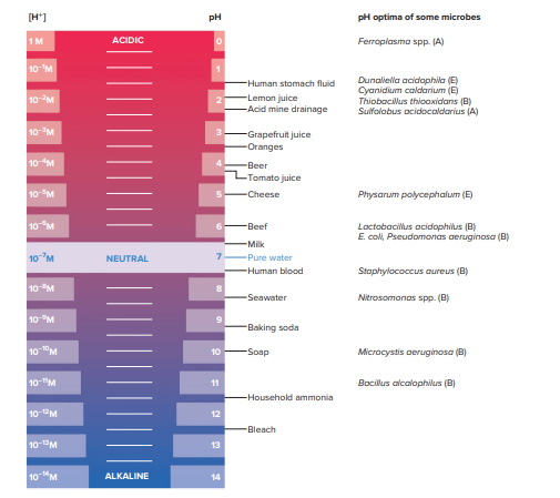 The pH Scale for Bacterial Growth
